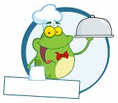 Frog Waiter With Copyspace