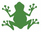 Frog Green Silhouette