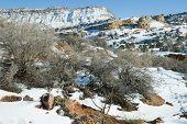 January High Desert Scene