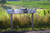 Seven Mail Boxes On A Country Road