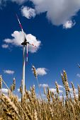 stock photo of wind-turbine  - Working wind turbine against the blue sky and wheat - JPG