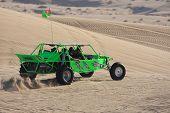 Green Sand Rail