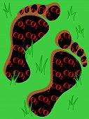 Carbon Footprint On Grass