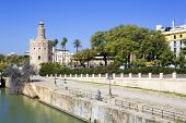 The Famous Torre Del Oro, The Moorish Tower Built To Defend Sevill poster