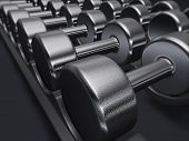 Free weights, dumbbells, gym