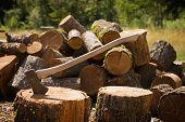 Axt mit gehacktem Holz