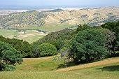 rolling hills of northern California