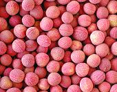 group of fresh lychee