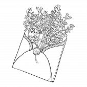 Vector Bouquet With Outline Lavender Flower Bunch, Bud And Leaves In Open Craft Envelope In Black Is poster