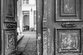 Black And White Photo Of Shabby Double Door Surface With Peeling Paint. Opened Door To Patio Inside  poster
