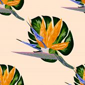 Strelitzia Pattern. Tropical Flower, Blossom Cluster Seamless Pattern . Beautiful Background With Tr poster