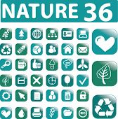 36 nature glossy buttons - light blue edition. vector