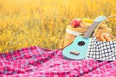 Picnic Props In The Autumn Meadow Field. Ukulele Guitar, Picnic Basket, Bread And Fruits On Picnic M poster