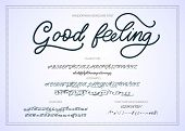 Hand Drawn Calligraphic Vector Monoline Font. Distress Signature Letters. Modern Script Calligraphy  poster