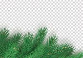 Winter Background With Realistic Branches Of Christmas Tree. Merry Christmas Greeting Card Template  poster