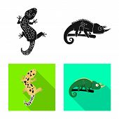 Isolated Object Of Tail And Fauna Symbol. Set Of Tail And Environment Stock Vector Illustration. poster