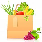 Vector isolated paper bag with vegetables