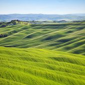 image of senesi  - Tuscany rolling hills on sunset - JPG