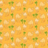 Camel Pattern