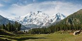 stock photo of karakoram  - Nanga Parbat and Fairy Meadows Panorama Himalaya Pakistan - JPG