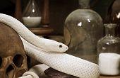 Постер, плакат: Техас крыс змеи крупным планом