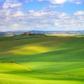 Tuscany, Crete Senesi Green Fields And Rolling Hills Landscape, Italy.
