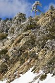 snowy mountain cliff