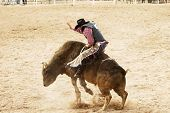 foto of bull riding  - bucking action during the bull rinding competition at a rodeo - JPG