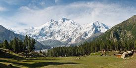 picture of karakoram  - Nanga Parbat and Fairy Meadows Panorama Himalaya Pakistan - JPG