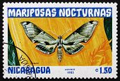 Postage Stamp Nicaragua 1983 Pholus Licaon, Nocturnal Moth