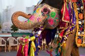 JAIPUR, INDIA - MARCH 29: people and elephants of the city are celebrating the gangaur festival on y