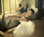 stock photo of ballet shoes  - Black and white swan - JPG