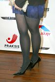 HOLLYWOOD -  Nia Vardalos arrives at the 2013 Philhellenes Gala benefiting Praksis at the SkyBar on