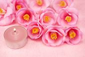Camellia flowers and candle