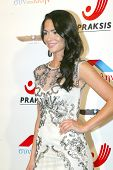 HOLLYWOOD - Antoinette Kalaj arrives at the 2013 Philhellenes Gala benefiting Praksis at the SkyBar
