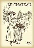 The women harvesting grape in the vineyard, vector hand drawn illustration