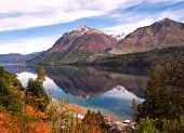 Autumn Colors In Lake Gutierrez, Near Bariloche, Patagonia, Argentina