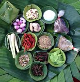 Herbs And Spices Set To Make Tom Yum Spicy Soup