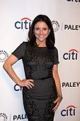 LOS ANGELES - MAR 27:  Julia Louis-Dreyfus at the PaleyFEST 2014 -