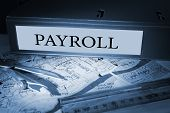 The word payroll on blue business binder on a desk