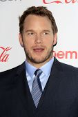 LOS ANGELES - MAR 27:  Chris Pratt at the  CinemaCon 2014 Awards Gala at Caesars Palace on March 27,