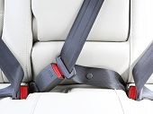 image of seatbelt  - fasten seat belts in the car for your safety - JPG