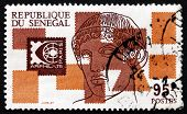 Postage Stamp Senegal 1975 Apollo Of Belvedere