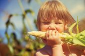 image of love bite  - Little girl eating corn on the cob - JPG