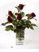 red roses in a clear glass vase
