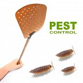stock photo of gnat  - Flyswatter and The Pill - JPG