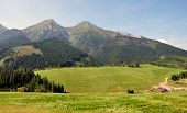 mountain Belianske Tatras, Slovakia,Europe