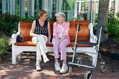 Two Elderly Friends Chatting On A Park Bench