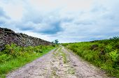 Empty Lane With Stone Fences In Lancashire Countryside, Uk