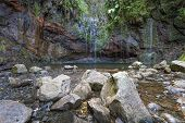 Natural sweet water pool on Madeira island, Portugal